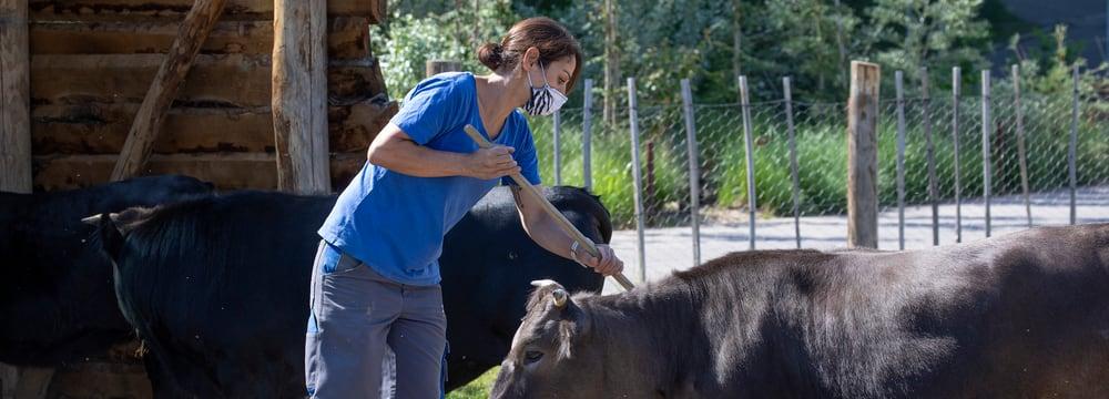 Leadimage Schnupperlehre im Zoo Zürich
