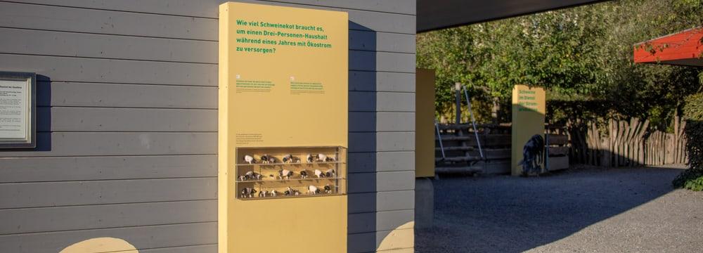 Ausstellung Zoolino im Zoo Zürich.