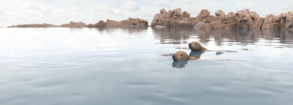 Rendering der Meeresküste Seelöwen im Zoo Zürich