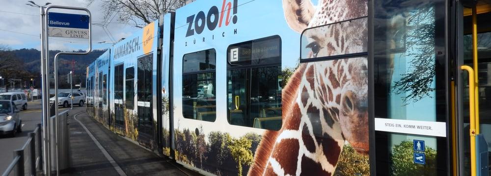 Zoo Tram Lewa