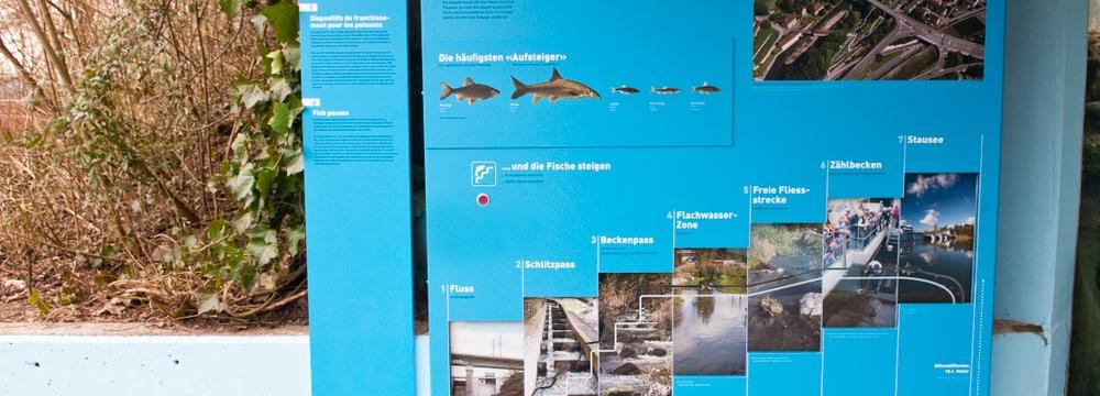 Naturschutzausstellung bei der Fischotteranlage im Zoo Zürich.