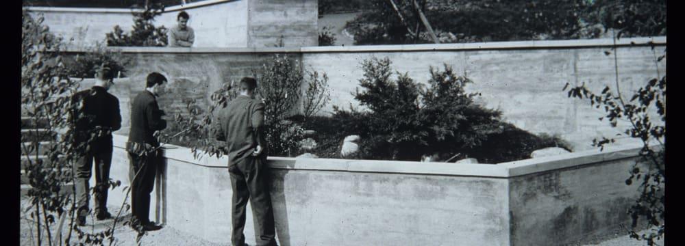 Historische Aufnahme Zoo Zürich