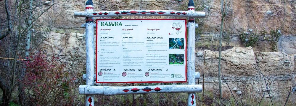 Schild Graupapageien in der Lewa Savanne.