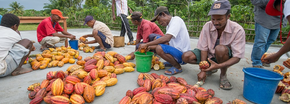 Kakao Madagaskar