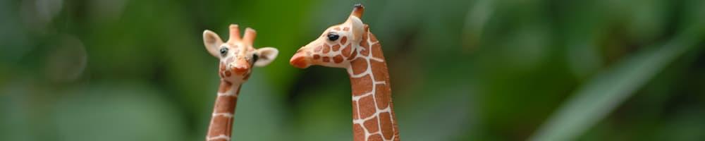 Schleich-Giraffen im Masoala Regenwald