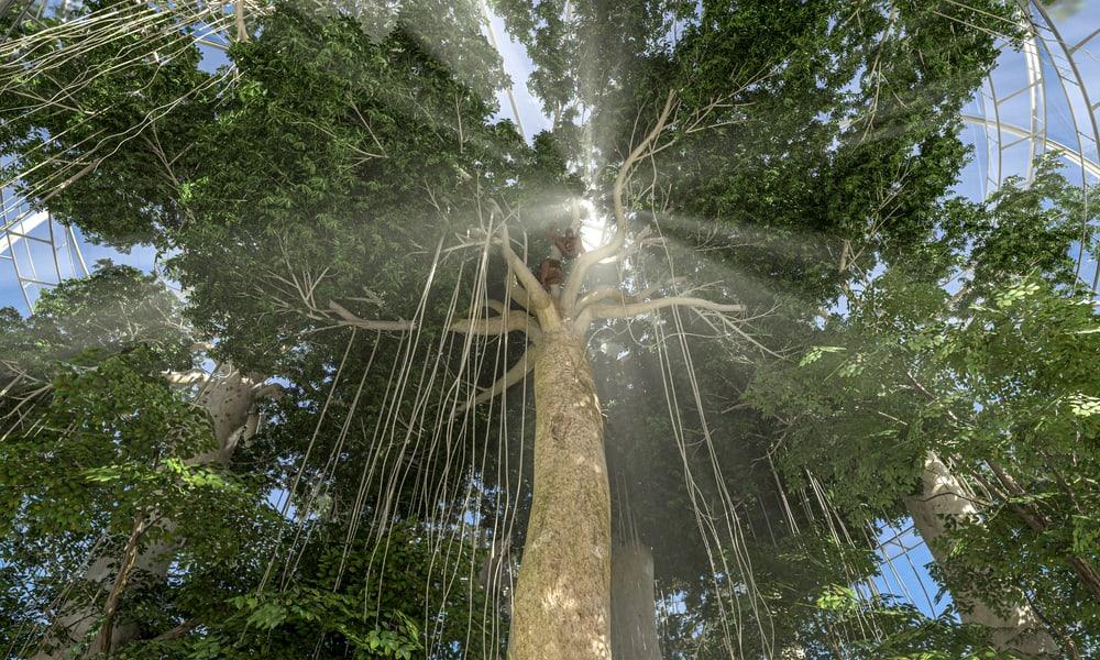 Visualisierung Sumatra Regenwald im Entwicklungsplan 2050 des Zoo Zürich.
