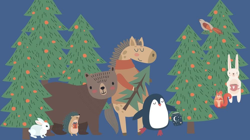 Weihnachtsprogramm für Kinder im Zoo Zürich.