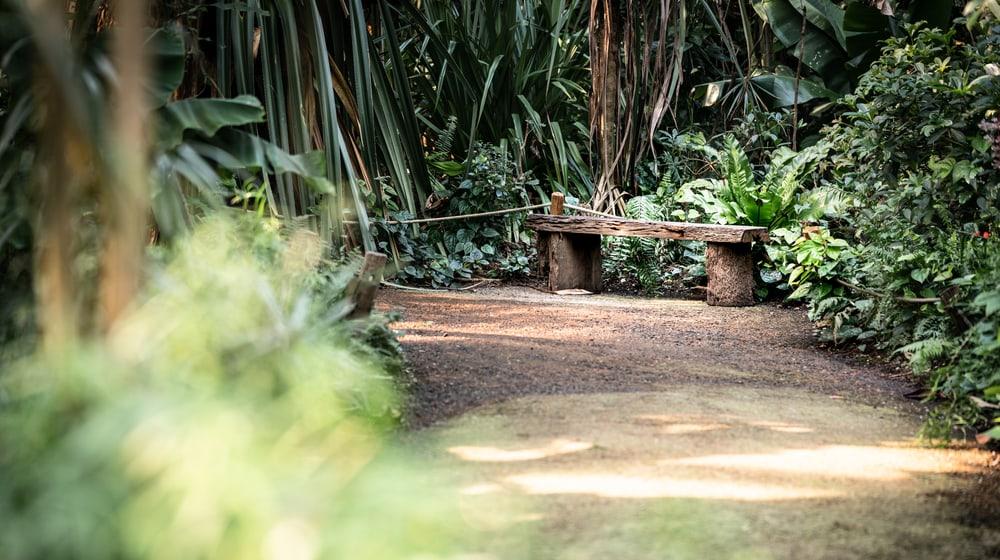 Leere Bank im Masoala Regenwald des Zoo Zürich