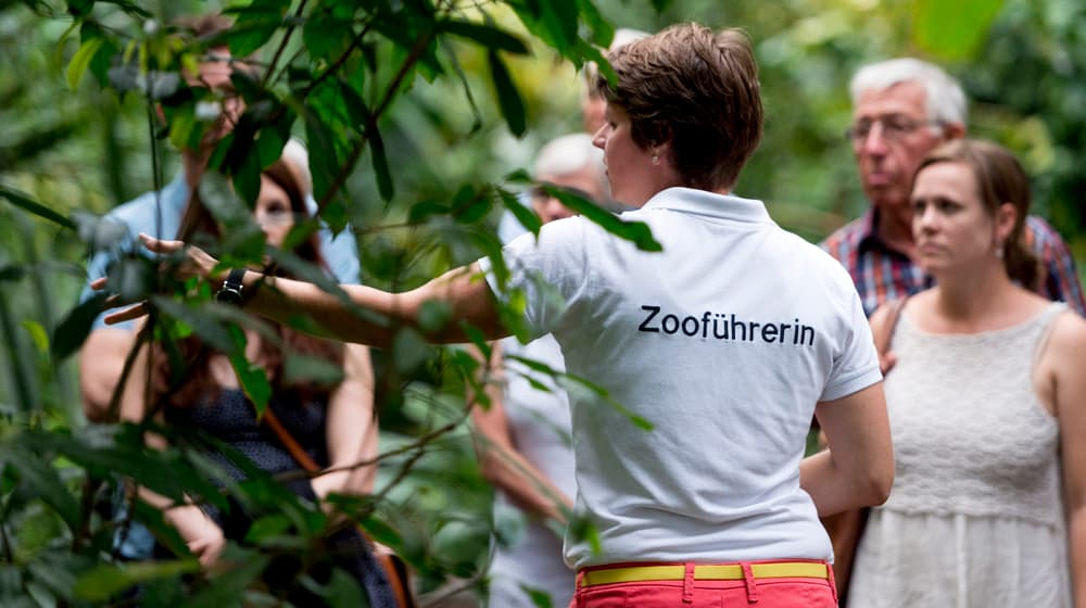 Führung im Zoo Zürich.