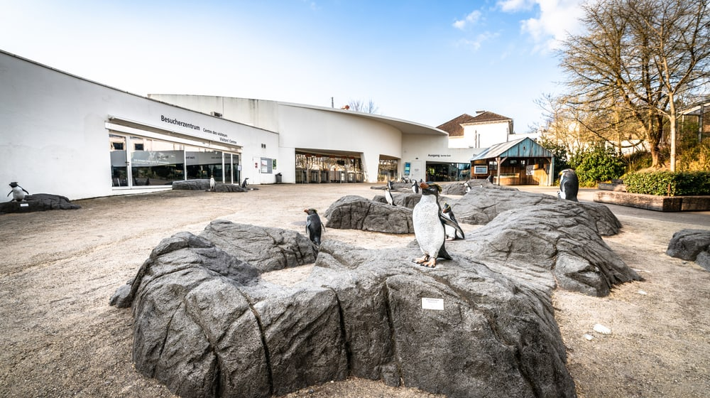 Zoo Zürich im März 2020, für die Besucher aufgrund der Covid-19-Pandemie geschlossen.