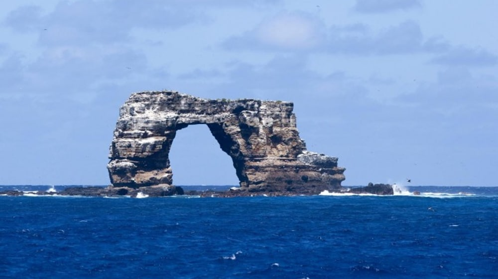 Darvins Arch