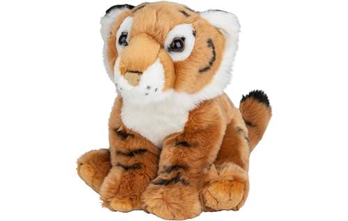 PLAN Tiger