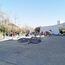Tag der Zoo-Wiedereröffnung am 1.3.2021.