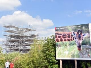 Baustelle Lewa Savanne im Zoo Zürich.