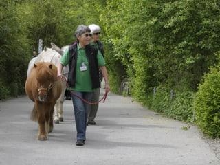 Karawane mit Zoolinotieren im Zoo Zürich