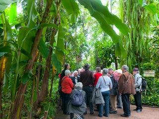 Seniorenrundgang im Masoala Regenwald