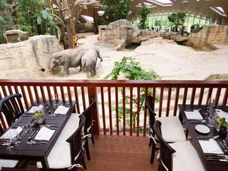 Thailodge im Kaeng Krachan Elefantenpark im Zoo Zürich