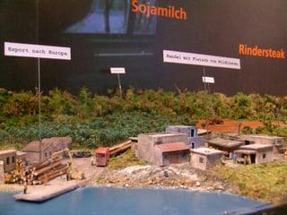 Ausstellung Shopping für den Regenwald bei den Menschenaffen