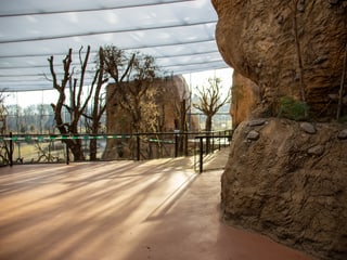 Blick in den oberen Stock des Lewa Giraffenhauses.