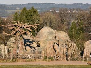 Kopjefelsen in der Lewa Savanne im Zoo Zürich.