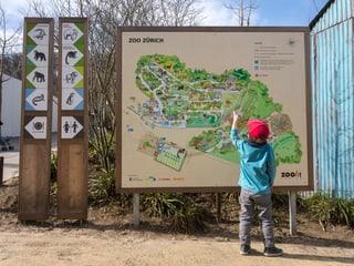 Grosse Tafel des Zooplans mit kleinem Knaben davor.