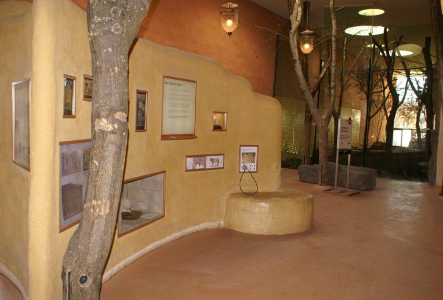 Ausstellung im Löwenhaus im Zoo Zürich.