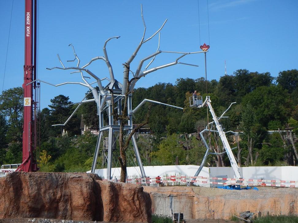 Baobab Baum Lewa Savanne