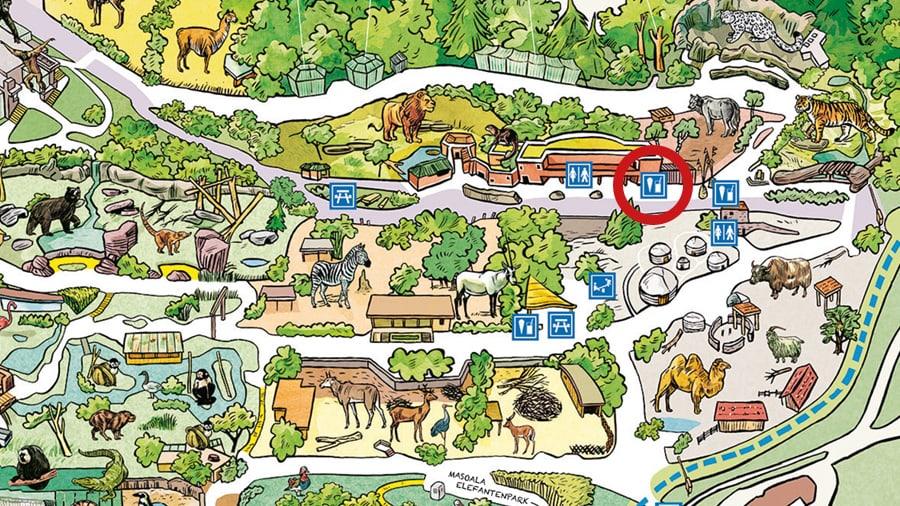 Situationsplan Löwen-Kiosk im Zoo Zürich.