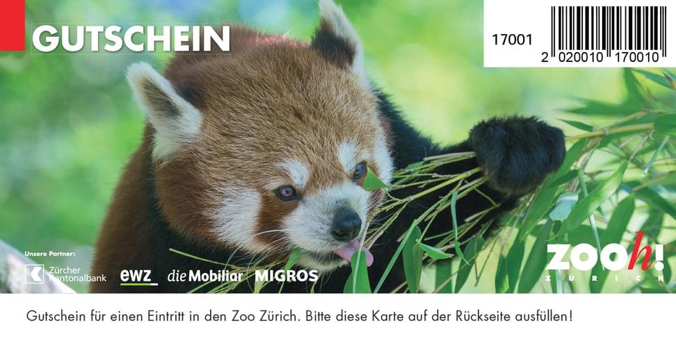 Gutschein Einzeleintritt Zoo Zürich.