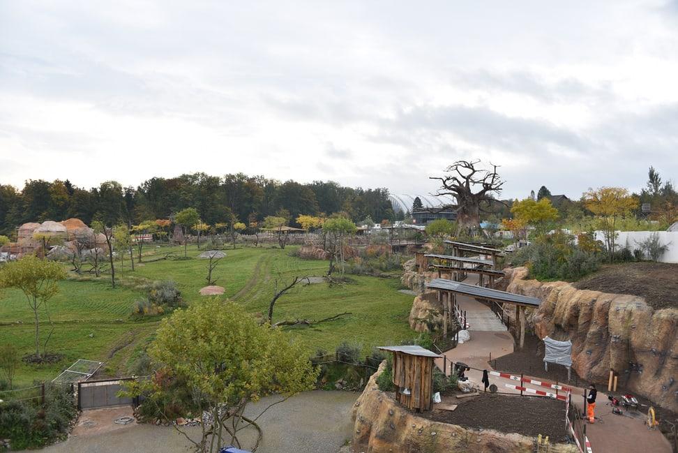 Blick über die im Bau befindliche Lewa Savanne im Zoo Zürich.