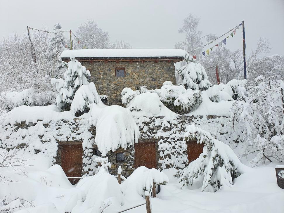 Tief verschneite Mongolische Steppe und Himalaya-Kiosk im Zoo Zürich.
