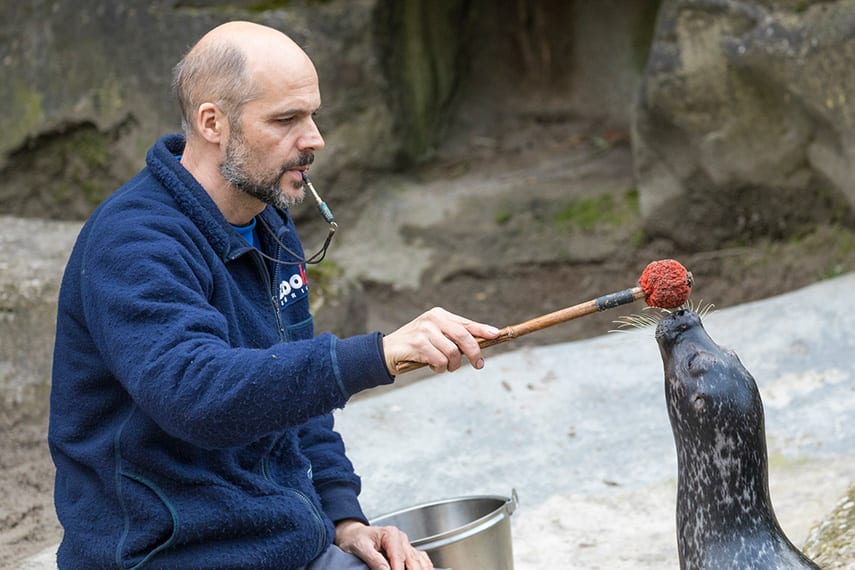 Seehund Training Hilfsmittel