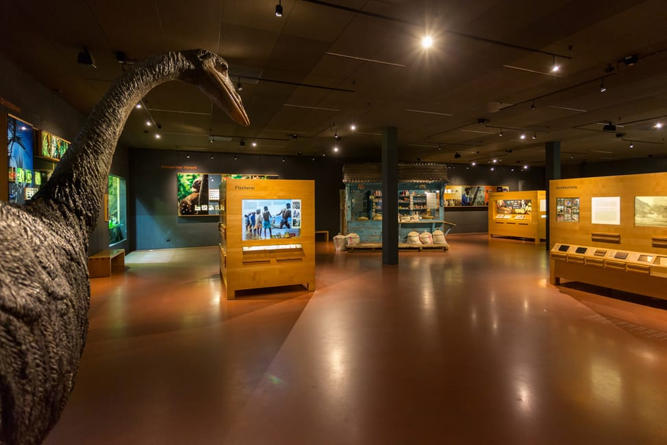 Ausstellung im Infozentrum Masoala Regenwald.