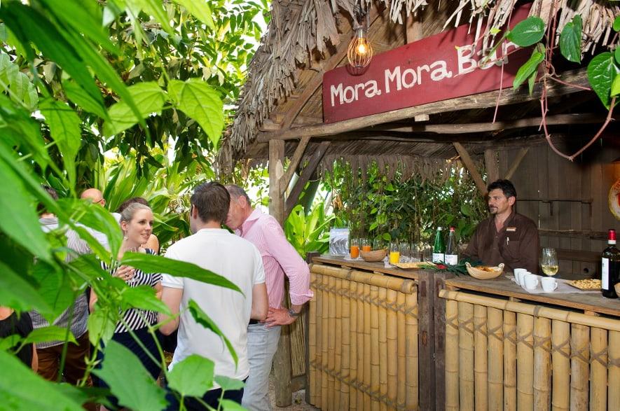 Mora-Mora Bar im Masoala Regenwald im Zoo Zürich
