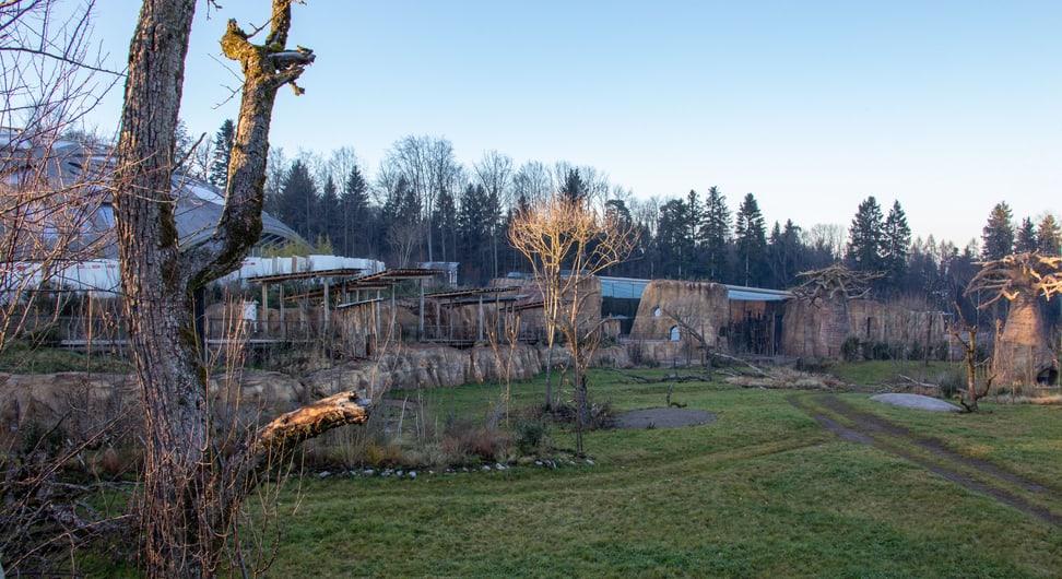 Ausblick vom Steg in der Lewa Savanne.