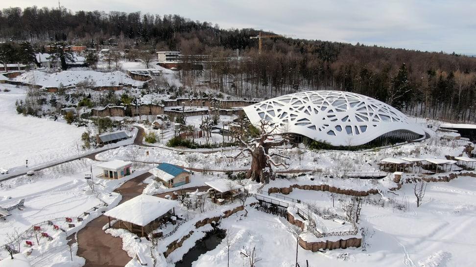 Kaeng Krachan Elefantenpark & Lewa Savanne im Schnee