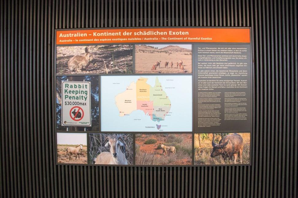 Tafel in der Naturschutzausstellung Australien im Zoo Zürich.
