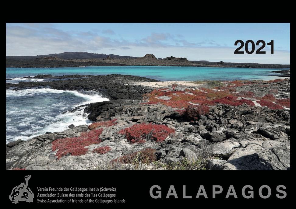 News Kalender 2021
