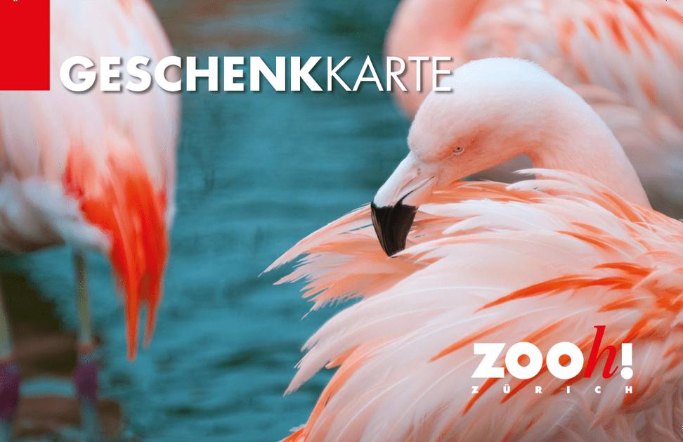 Geschenkkarte Zoo Zürich.
