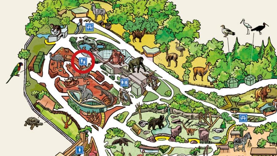 Situationsplan australischer Foodtruck im Zoo Zürich.