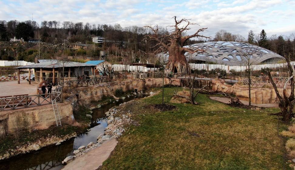 Blick auf das Wasserloch und das Lewa Dorf im Januar 2020.