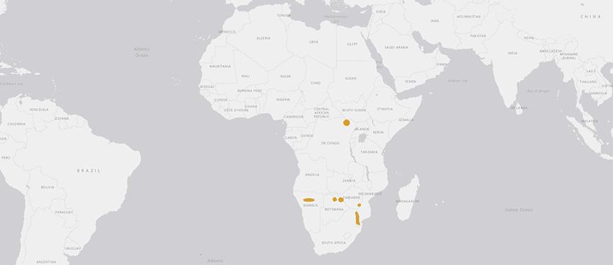 Verbreitungskarte Südliches Breitmaulnashorn