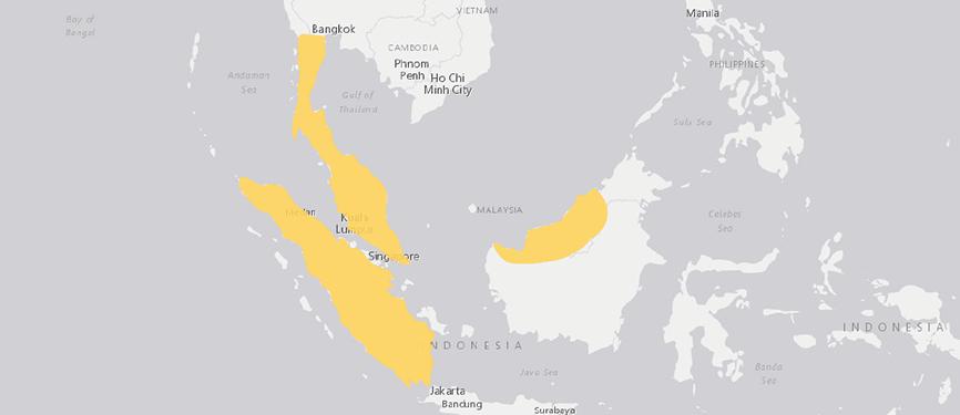 Verbreitungskarte Malaiische Riesengespenstschrecke