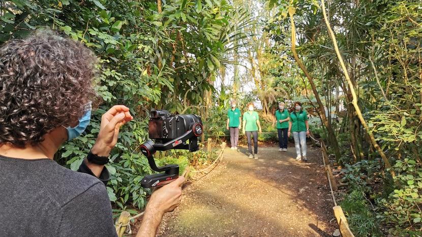 Aufnahmen für die Jerusalema-Tanzchallenge im Masoala Regenwald.
