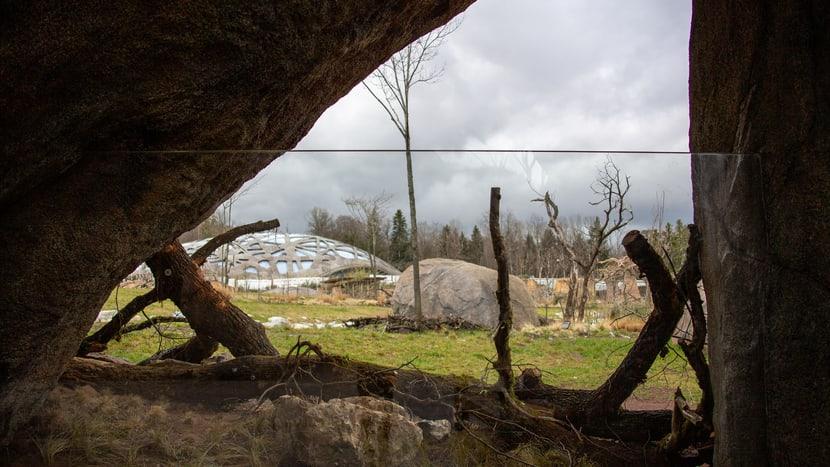 Ausblick auf die Savanne aus den Kopjefelsen.