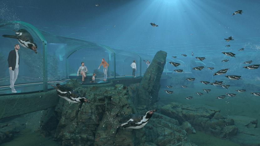Rendering der Meeresküste Unterwasser im Zoo Zürich