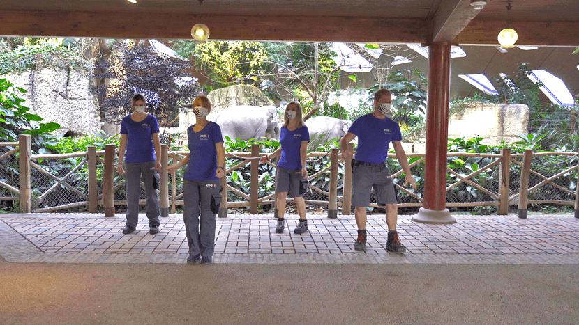 Making-of des Jerusalema-Tanzvideos im Zoo Zürich.