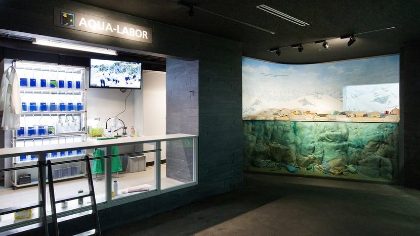 Aqualabor und vermüllte Küste im Aquarium des Zoo Zürich.