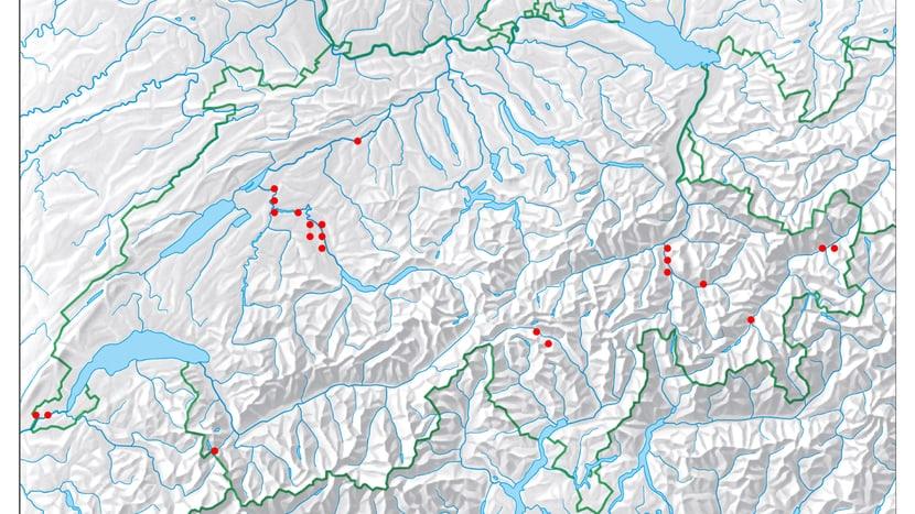 Nachweise von Fischottern in der Schweiz seit 2009 bis 2019.