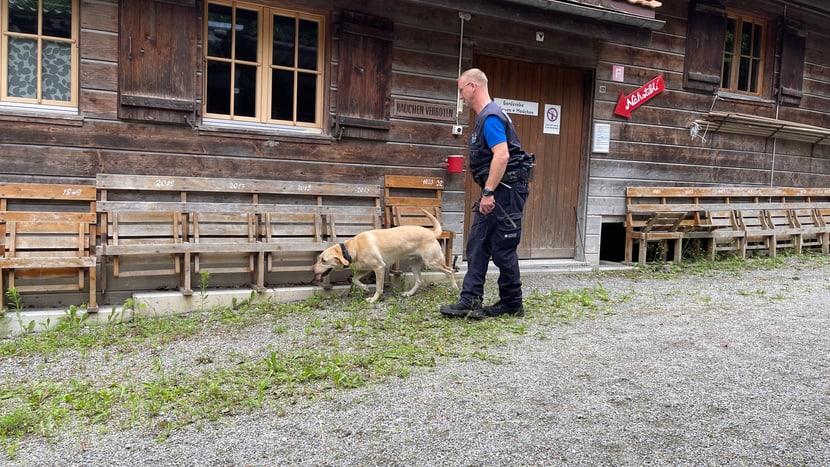 Ein Artenschutzspürhund beim Training in Interlaken.